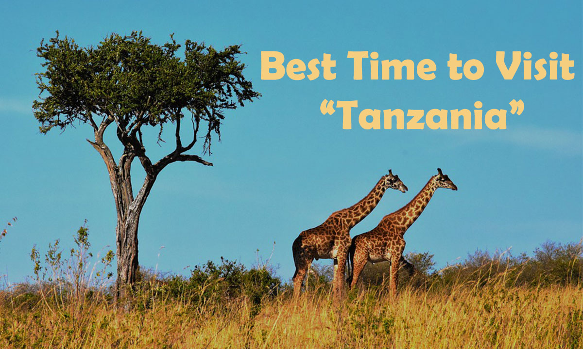 Things to Know Before You Visit Tanzania