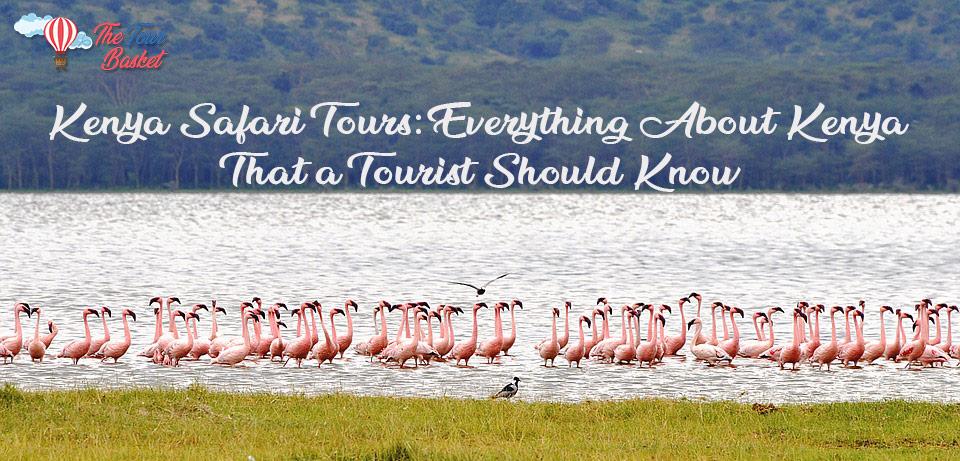 Kenya Safari Tours: Everything About Kenya That a Tourist Should Know